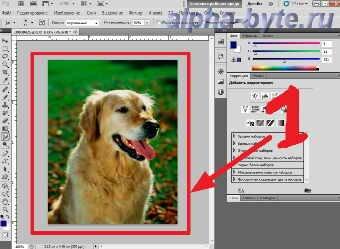 рабочая область Photoshop CS5